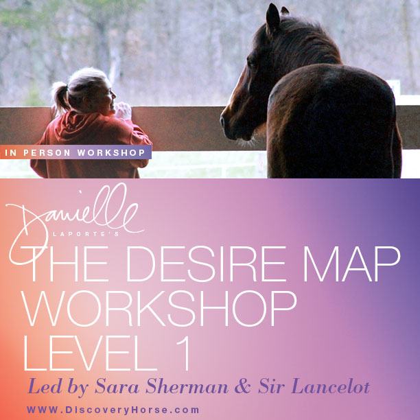 Desire Map Workshops - Discovery Horse Discovery Horse on