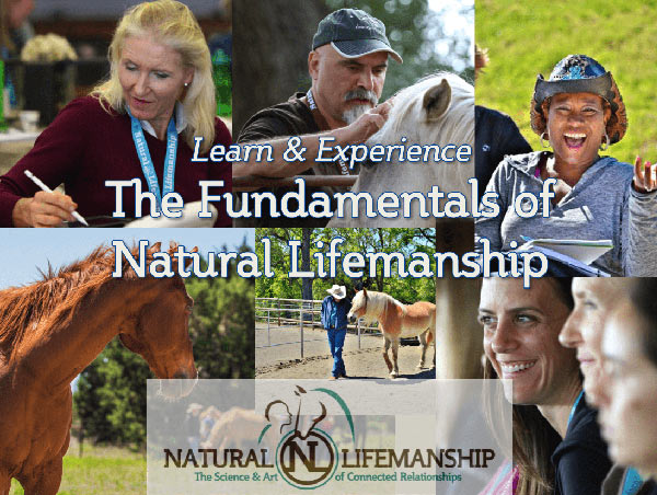 Natural Lifemanship Fundamentals