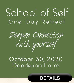 School of Self Retreat